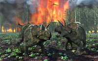 A pair of Albertaceratops running away from a forest fire.