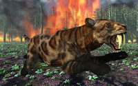 A Saber-Toothed Tiger running away from a forest fire.