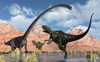 A pair of Yangchuanosaurus dinosaurs confront an Omeisaurus. 11079027660| 写真素材・ストックフォト・画像・イラスト素材|アマナイメージズ