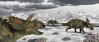 Albertaceratops during their winter migration.