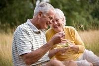 A senior couple having a picnic