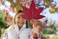 Girl (7-9) holding red maple leaf in park in autumn, smiling, close-up, low angle view