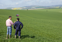 Farmers talking in young wheat field with fertilizing tractor in background 11080006860| 写真素材・ストックフォト・画像・イラスト素材|アマナイメージズ