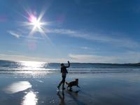 Woman and dog enjoying the sun, beach and ocean at Gerrans Bay, Cornwall, United Kingdom