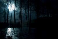 Moonshine hitting water