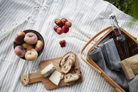 Directly above shot of food and basket on picnic blanket 11081011085| 写真素材・ストックフォト・画像・イラスト素材|アマナイメージズ