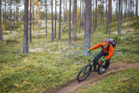 Man riding mountain bike on dirt road by trees in forest 11081011249| 写真素材・ストックフォト・画像・イラスト素材|アマナイメージズ