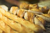 Close up of fresh bread in bakery 11086011538| 写真素材・ストックフォト・画像・イラスト素材|アマナイメージズ