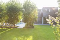 Modern house overlooking sunny backyard 11086011672| 写真素材・ストックフォト・画像・イラスト素材|アマナイメージズ
