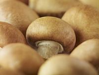 Extreme close up of whole chestnut mushrooms 11086013069| 写真素材・ストックフォト・画像・イラスト素材|アマナイメージズ
