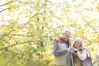 Senior couple using digital camera in autumn park
