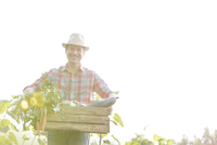 Smiling man carrying crate of fresh harvested vegetables