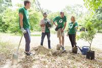 Environmentalist volunteers planting new tree 11086021103| 写真素材・ストックフォト・画像・イラスト素材|アマナイメージズ