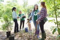 Environmentalist volunteers planting new tree