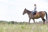 Woman horseback riding in rural field 11086023128| 写真素材・ストックフォト・画像・イラスト素材|アマナイメージズ