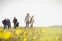 Multi-generation family walking in sunny meadow with wildflowers