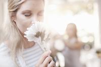Woman smelling white gerber daisy 11086025940| 写真素材・ストックフォト・画像・イラスト素材|アマナイメージズ