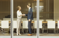 Businessman and businesswoman handshaking at conference room window