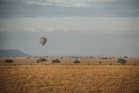 Hot hair balloon floating over tranquil desert, Serengeti, Tanzania