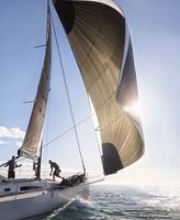 Wind pulling sail on sailboat on sunny ocean