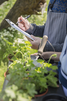Close up plant nursery workers with clipboard and potted herbs 11086028941| 写真素材・ストックフォト・画像・イラスト素材|アマナイメージズ