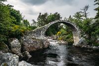 Arched footbridge over tranquil stream, Carrbridge, Scotland