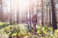Young couple with backpacks hiking in sunny woods 11086032379  写真素材・ストックフォト・画像・イラスト素材 アマナイメージズ