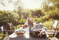 Food and flower bouquet on sunny garden party patio table