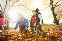 Playful young family playing in autumn leaves in sunny park 11086032734| 写真素材・ストックフォト・画像・イラスト素材|アマナイメージズ