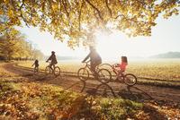 Young family bike riding in sunny autumn park 11086032740| 写真素材・ストックフォト・画像・イラスト素材|アマナイメージズ