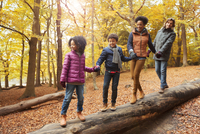 Young family holding hands walking on log in autumn woods