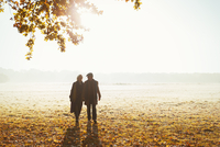 Silhouette senior couple holding hands walking in sunny autumn park