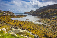 Sunny, craggy tranquil view of water, Golden Road, Harris, Outer Hebrides 11086032863| 写真素材・ストックフォト・画像・イラスト素材|アマナイメージズ