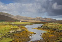 Sunny tranquil view craggy landscape and stream, Loch Aineort, South Uist, Outer Hebrides