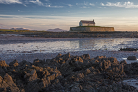 Tranquil medieval island church at low tide, St Cwyfans Church, Anglesey, Wales 11086034165| 写真素材・ストックフォト・画像・イラスト素材|アマナイメージズ