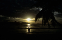 Silhouetted person on a beach at sunset