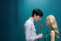 Man with flower for girlfriend 11087014775| 写真素材・ストックフォト・画像・イラスト素材|アマナイメージズ