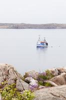 Sweden, Bohuslan, Lysekil, Fishing boat