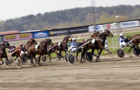 Sweden, Vastra Gotaland, Gothenburg, View of horse race