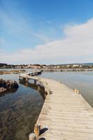 France, Languedoc-Roussillon, Peyriac de Mer, Boardwalk over shallow water