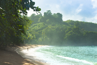 Trinidad and Tobago, Tobago, Englishman's Bay, Scenic view of sea coast