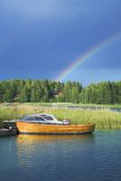 Sweden, Uppland, Stockholm Archipelago, Loparo, Rainbow over forest