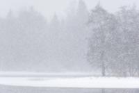 Sweden, Uppland, Farnebofjarden, Winter scene 11090012097| 写真素材・ストックフォト・画像・イラスト素材|アマナイメージズ