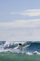 Australia, Queensland, Sunshine Coast, Noosa, Alexandria Bay, Young man surfing