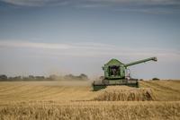 Sweden, Skane, Combine harvesting crop