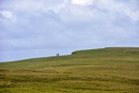 UK, Scotland, Shetland, St Ninian's Isle, Green cliff and cloudy sky