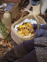 Sweden, Woman with basket of chanterelle mushrooms