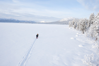 Sweden, Lappland, Jokkmokk, Three men cross-country skiing across frozen lake
