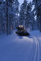 Sweden, Vasterbotten, Umea, Stadsliden, Snowplow in forest
