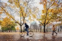 Germany, Berlin, Park on rainy day